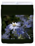 Cineraria  1217 Duvet Cover by Terri Winkler