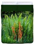 Cinnamon Fern Duvet Cover