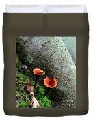 Cinnamon Polypore  Duvet Cover