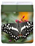 Citrus Swallowtail Butterfly  Duvet Cover