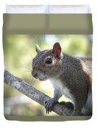 City Squirrel On The Hunt Duvet Cover by Belinda Lee
