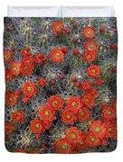 Claret Cup Cactus Flowers Detail Duvet Cover
