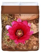 Claret Cup Cactus On Red Rock In Sedona Duvet Cover