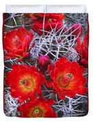 Claretcup Cactus In Bloom Wildflowers Duvet Cover