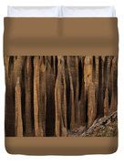 Clay Organ Pipes Formation In Front Duvet Cover