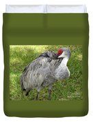 Cleaning  Feathers Duvet Cover