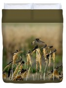 Cliff Swallows Perched On Grasses Duvet Cover