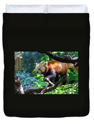Climbing Red Panda Bear Duvet Cover
