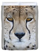 Close-up Of A Cheetah Acinonyx Jubatus Duvet Cover