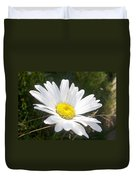 Close Up Of A Margarite Daisy Flower Duvet Cover