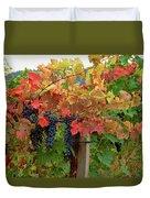 Close-up Of Cabernet Sauvignon Grapes Duvet Cover