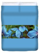Close-up Of Himalayan Poppy Flowers Duvet Cover