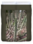 Close Up Of Long Cactus With Long Thorns  Duvet Cover