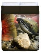 Close Up Underwater View Of Sockeye Red Duvet Cover