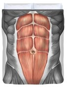 Close-up View Of Male Abdominal Muscles Duvet Cover
