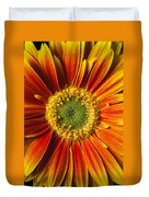 Close Up Yellow Orange Mum Duvet Cover