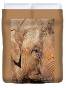 Closeup Of An Elephant Duvet Cover