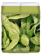 Closeup Of Boston Lettuce Duvet Cover