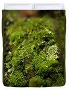 Closeup Of Moss And Lichen. Rhoen Duvet Cover
