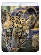 Clouded Leopard Duvet Cover