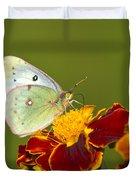 Clouded Sulphur Butterfly Duvet Cover