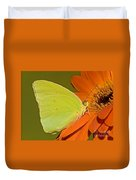 Cloudless Sulphur Butterfly Duvet Cover