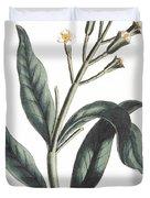 Clove Eugenia Aromatica Duvet Cover