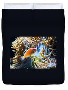 Clown Fish - Anemonefish Swimming Along A Large Anemone Amphiprion Duvet Cover