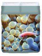 Clownfish 56 Duvet Cover