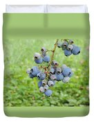 Clump Of Blueberries 3 Duvet Cover