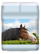 Clydesdale Horse Munching Duvet Cover
