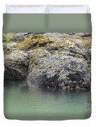 Coast Ecosystems Duvet Cover