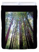Coastal Redwoods Reach For The Sky In Armstrong Redwoods State Preserve Near Guerneville-ca Duvet Cover
