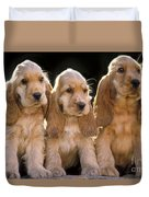 Cocker Spaniel Puppies Duvet Cover