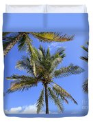 Cocoanut Palm Trees Sky Background Duvet Cover