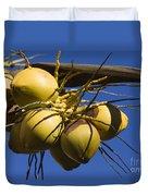 Coconut 1 Duvet Cover