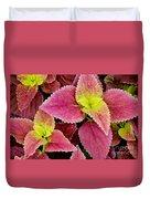 Coleus Colorfulius Duvet Cover