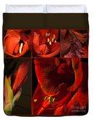 Collage - Amaryllis - Red 01- Elena Yakubovich Duvet Cover