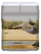 Collared Dove  Duvet Cover