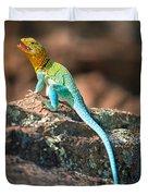 Collared Lizard Duvet Cover
