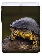 Colombian Wood Turtle Amazon Ecuador Duvet Cover