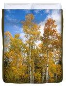 Colorado Autumn Aspens  Duvet Cover