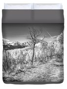 Colorado Backcountry Autumn View Bw Duvet Cover by James BO  Insogna