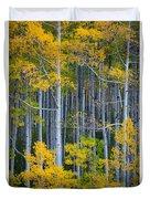 Colorado Fall Color Duvet Cover