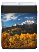Colorado Gold Duvet Cover by Darren  White