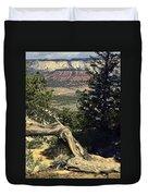 Colorado Plateau Duvet Cover