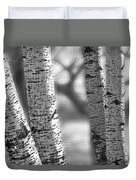 Colorado White Birch Trees In Black And White Duvet Cover