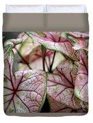 Colorful Coleous Duvet Cover