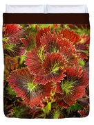 Colorful Coleus Duvet Cover
