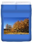 Colorful Colorado Duvet Cover